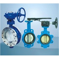 lug/wafer/flanged butterfly valve