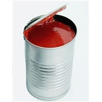 Tomato Paste / Puree Concentrate