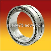 Cylindrical Roller Bearings (SL0248)