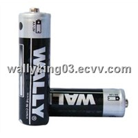 R6 Carbon AA Battery