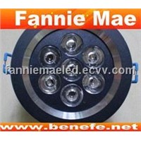 Fannie Mae LED Ceiling Light
