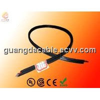 Coax with Power Cable (RG59)