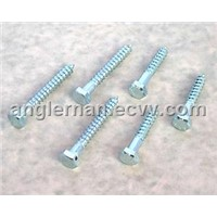 Din 975 hex lag screw