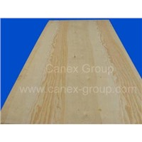 Pine Plywood / CDX Plywood
