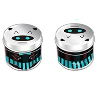 mint tin can, mint tin box, mint box, candy mint box