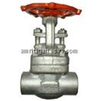 Forged Stainless Steel Gate Valves