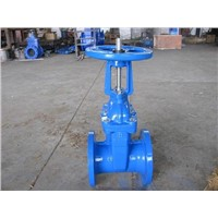 (ANSI) Cast Iron Gate Valve (RS)