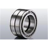 Double-Row Full Complement Cylindrical Roller Bearing