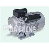 Electric Motor YC Series