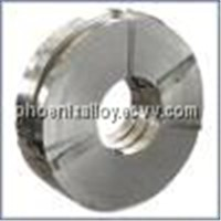 Supply 304/304L Strip/Coil