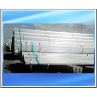 Thread Galvanized Steel Pipe (S195T)