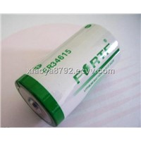 3.6V Primary Lithium Battery Cell