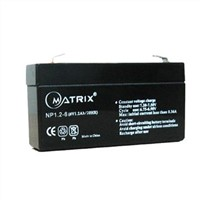 6V1.2Ah Lead Acid Battery