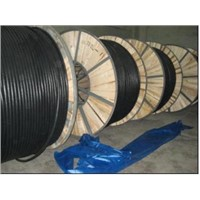 6.0/1KV PVC/XLPE insulated power cable