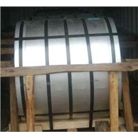 Color-Coated Steel Coils