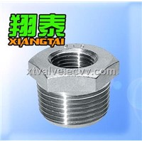 Hexagon Bushings (Pipe Fitting)