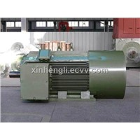 Inverter Electric Motor