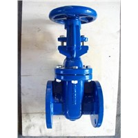 BS Cast Iron Gate Valve (RS)