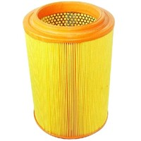 air filter for cars and trucks