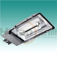 Street Light of Induction Lamp