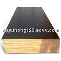 Film Faced Plywood with Black Film