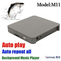 Background Music Player (M11)
