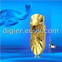 Biometric Fingerprint Door Locks & Keypad Locks