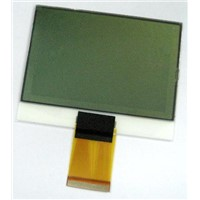 Graphic LCD Module (COG)