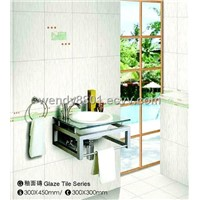 JLS Bathroom Polished Floor Tile