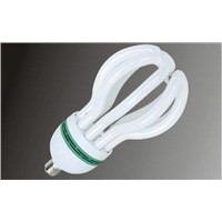 Lotus Compact Fluorescent Light