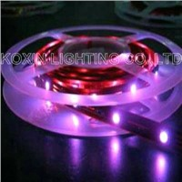 SMD 5050 Flexible Strip Lights