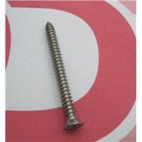 Titanium Drywall Screw