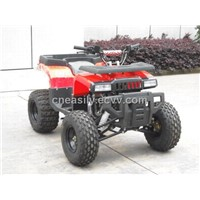 YN110 (New Hammer 110cc Quad ATV)