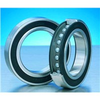 ZWZ Deep Groove Ball Bearings