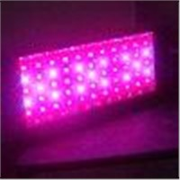 Grow Light (ALS-SZD)
