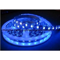 LED Strips (5050-60)