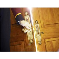 Biometric Security Door Lock/Security Lock
