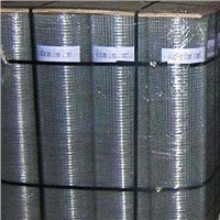 Welded Wire Mesh Roll
