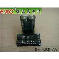 AA /LR6 Alkaline Battery