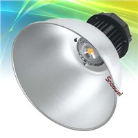 LED Industral Light (30W to 100W)