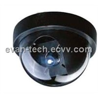 Motion-JPEG Dome IP Cameras
