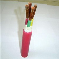Silicon-Rubber Insulated Control Cable