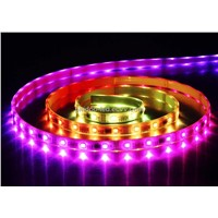 LED Trotting Horse Strip Light