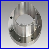 Stainless Steel Forging Parts