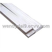 Stainless Steel Flat Bar (310)
