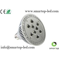 CE/RoHS-Approved LED Cree Bulb (PAR38)