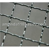 Crimped Wire Mesh (factory)