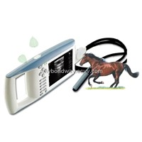 Digital Palmtop Vet Ultrasound Scanner