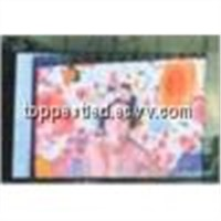 LED Curtain Display / LED Screen