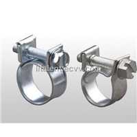 Fuel Injection Clamp